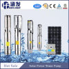 Sk Series Solar Powered Water Pump, Mini Solar Water Pump