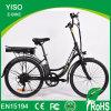 High Quality 36V 250W Classic Lean Style Urban City Bike Outdoor Bike for Lady