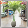 Fiberglass Artificial Bottle Palm Trees for Indoor Decoration