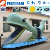 Water Play Equipment Water Slide (ZC/CW/Cetacean)