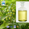 Natural & Pure White Camphor Essential Oil