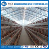 Steel Structure Poultry Farm Shed Chicken Layers House