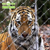 316 Stainless Steel Wire Rope Net/Netting for Zoo Enlcosures/ Tiger Fence