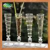 Popular New Designer Glass Vase for Home Decoration (EB-B-4592)