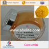 Curcumin Price Organic Extract 95% Curcumin Powder