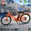 500W Fat Tire Electric Beach Motorcycle with Suspension