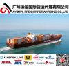 Door to Door Shipping Service From Guangzhou/Yiwu, China to Somalia
