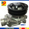 6he1 Engine Water Pump for Isuzu with Two Braided Chains