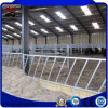 Empty Inside Prefabricated New Steel Frame for Cattle Farm House