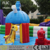 High Quality Outdoor& Indoor Inflatable Castle