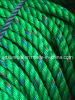 Green with Blue&Red PP Rope Ppd PE Rope