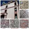 Hot Selling G687/G664/G562/G681/G635 Pink Red Granite Tile for Floor/Wall Cladding