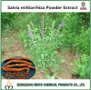 Traditional Chinese Medicine Salvia Miltiorrhiza Powder Extract 5: 1, 10: 1, 20: 1