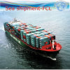 Door to Door Full Container Service, International Shipping (FCL 20′′40′′)