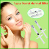 Cross-Linked Sodium Hyaluronate Gel Dermal Filler