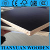 15X1220X2440mm Glue Faced Plywood for Middle East