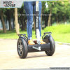 High Quality Cheap Brushless Electric Motor Electric Scooter (V5)