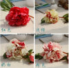 High Grade Real Touch Wedding Decoration Silk Peony Artificial Flower for Sale