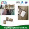 Diamond Segments for India Hard Granite Stone