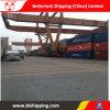Shipping China to Makassar (Indonesia) Forwarder Logistics Freight