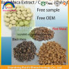 100% Organic Maca Extract for Health Product