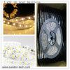 24V Made in China Hot Sale LED Lighting Strips