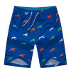 OEM Printing Men Shorts Designer Swimwear Shorts Beach Wear