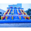 Kids Giant Inflatable Water Slide/Inflatable Water Slide with Water Pool