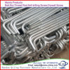China Yongnian Made Zinc Plated Galvanized J Foundation Anchor Bolt