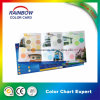 High Quality Professional Brochure Printing Color Chart for Advertisement