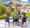 Garden Table Chair Outdoor Rattan Garden Chair (Z353)