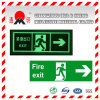 Pet/PVC Photo Luminescent Reflective Film for Parking Sign (FG301)