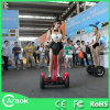 Chinese Mini Electric Car Electric Motorycyle