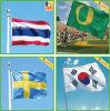 Custom Hanging National Flag, Car Flag, Sports Flag
