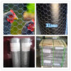 Hot Dipped Galvanized Chicken Wire