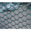PVC Coated Hex Wire Netting Chicken Mesh