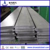 Best Price! Hot Sellingf! Flat Bar/Manufacturer in Tianjin China