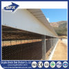 Low Cost Hot Galvanized Steel Frame Prefab Chicken Coop House in Poultry Farms House