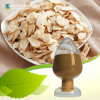Astragalus Root Extract Astragaloside 80% Polysaccharides