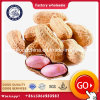 Wholesale AA and Food Grade Shelled Peanuts