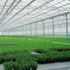 Hx Low Cost Greenhouse Equipment