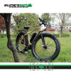 Al Alloy Pedal Electric Bicycle with 8 Fun Motor