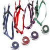 Pets Reflective Safety Products, Small Dog Leashes on The Rope, The Polyester Rope of Pets Leashes with CE En13356