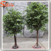 Indoor Decorative Mini Artificial Banyan Tree