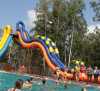 (WS23) Giant Inflatable Water Slide Made of Durable 0.9 Mm PVC Tarpaulin