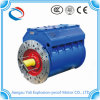 Ybs Explosion Proof Three-Phase Electric Motor 3300V