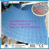 Indoor Sports Gym Rubber Flooring, Anti-Slip Rubber Flooring/Anti-Slip Floor Mat