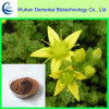 Horny Goat Weed Extract/Epimedium Traditional Chinese Medicine for Tonifying Yang