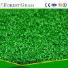 Putting Green, Golf Grass, Artificial Grass for Golf Field