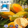 Manufacturer Supply Papain Carica Papaya Plant Extract